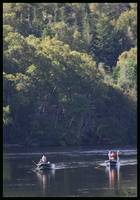 Flyfishing on the Humber River