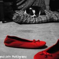 Red Shoe Diaries Art Prints & Posters by Dee Crawford