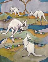 white roos