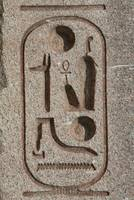 Ramses II Cartouch (close up)