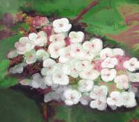 WhiteFlowers