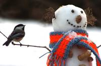Snowman and Chickadee
