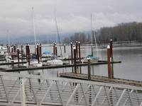 St Helens Marina, Oregon, Winter 2009