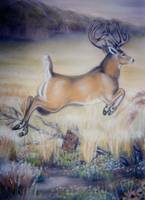 Fleeing Buck