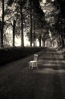 The (black and) White Chair, 9