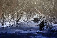 River Frost