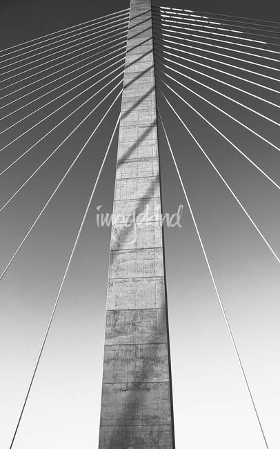 Cables and Pillar - Ravenel Bridge - Charleston, S
