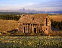 Old House and the Teton Range