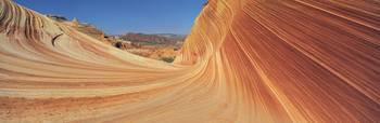 Nature's Lines of Time