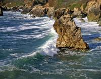 Big Sur Coast #5