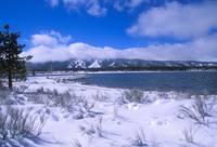 Snowy Shoreline Big Bear Lake by Tony Kerst