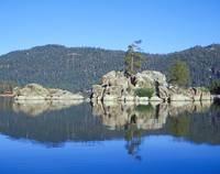 Boulder Bay Island Pine by Tony Kerst