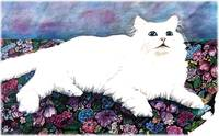 White Long Haired Cat Sitting on Floral Fabric