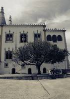 Scenes from Sintra