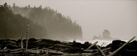Cribs Beach, West Coast Trail, BC, 2007