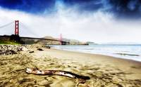 Golden Gate Sands