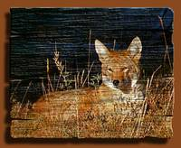 Coyote on wood copy