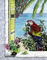 Scarlet Macaw and the Sea - watercolor and ink