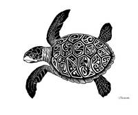Green Sea Turtle - Glyph Turtle
