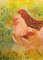 Chicken/Rooster - Chicken Love
