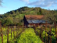 Wine Country Barn