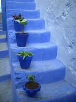 Blue stairs in Argan,Morroco