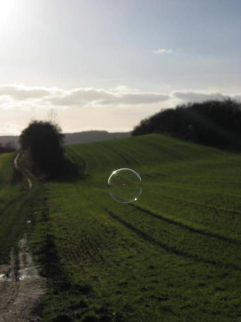 Seifenblase / bubble