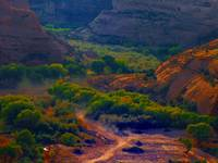 Canyon de Chelly, Chinle, Arizona 8