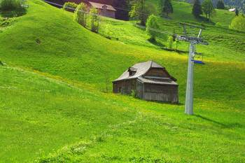 Ski slope in summer, Unterwasser by Daniel Kazor