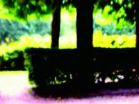 Tree at Garden Paris Painting 1