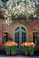 Spring at Filoli, The Pool House