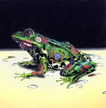 Romeo by artist Mike Russell. Giclee prints, art prints, animal art; frog art, a prince of a frog, all wet; from an original,  realism