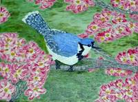 Blossoms and Blue Jay