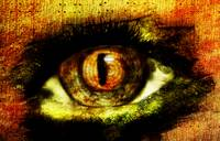 Fantasy Art Series_Eye on You