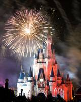 Wishes over Cinderella's Castle