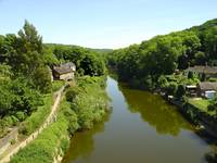 River Severn From The Iron Bridge  (15954-RDB)