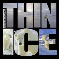 POLAR BEARS & THIN ICE I