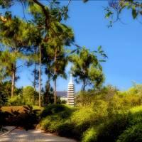 Garden Steeple by Donnie Shackleford