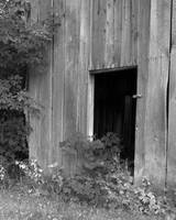 Barn, monochrome