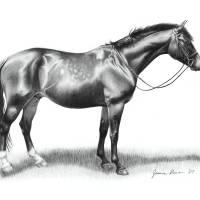 """""""Mead Portrait"""" by JeanneRewa"""