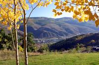 Vail in gold