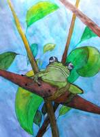 Reed Frog in Watercolor