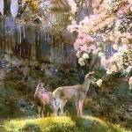 Animals_Actual_and_Abstract gallery