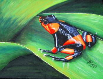 Lehmann's Poison Frog by artist Nancy Young. Giclee prints, art prints, animal art; frog art, a frog on a leaf; Dendrobates Lehmanni; from an original  painting