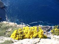 Cliffs at Cap de Formentor