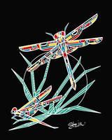 Wright's Dragonfly by Kristen Stein
