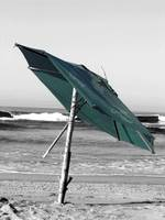 Acapulco Umbrella