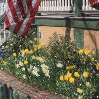 """Flag over the front porch Cape may, NJ"" by Artkeptsimple"