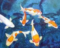 Free Swim by Kristen Stein