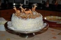 Hill country coconut birthday cake